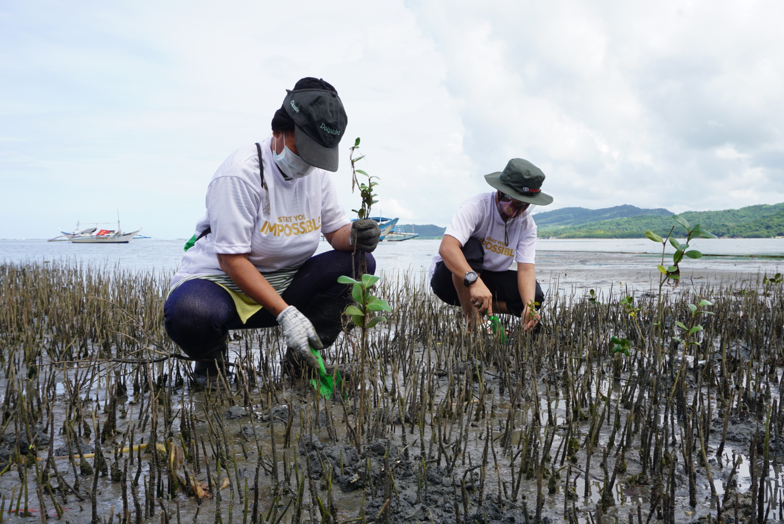 Toyota adopts 10-HA mangrove plantation area in Lian, Batangas.